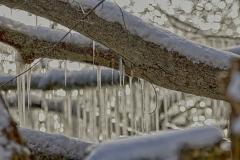 Ice by Lake Ontario
