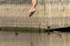 Fishing Delights