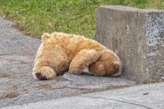 Sad Teddy During Pandemic