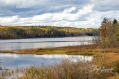 Fall In Elk Lake