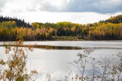 Fall Horizon Elk Lake
