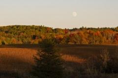 Golden Hour Moon Rising