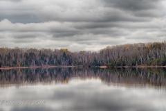 Elk Lake Tree Lines