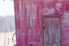 Amherst Island Barn