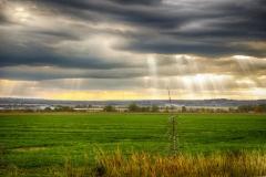 Open Fields in Earlton